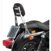 Harley Davidson - SPORTSTER 883-1200 (09-11) : TS900